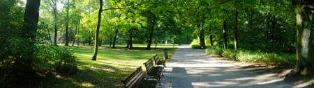 Park in de herfst de tijd Stockfoto