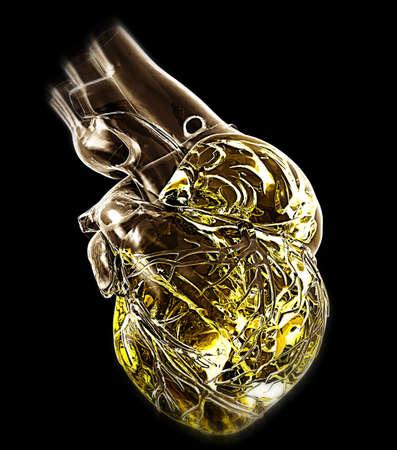 part body: Model of human heart Stock Photo