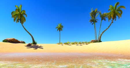 Hawaiian paradise Stock Photo - 16885197