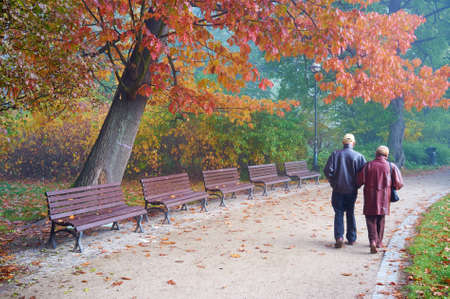 Senior couple in the park photo