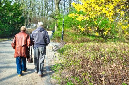 Senior couple walking in park Stock Photo - 17458315