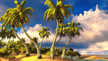 Tropical paradise beach photo
