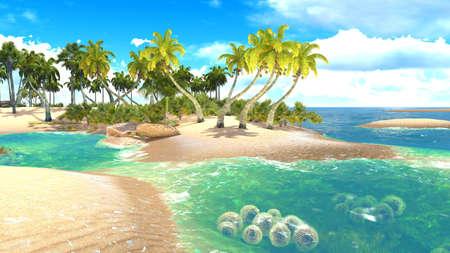 bora: Tropical paradise beach