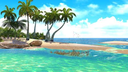 maldives: Tropical paradise beach
