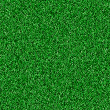 Grassy background photo