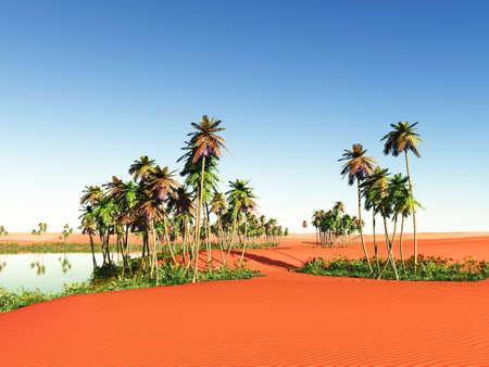 desierto del sahara: �frica oasis Foto de archivo