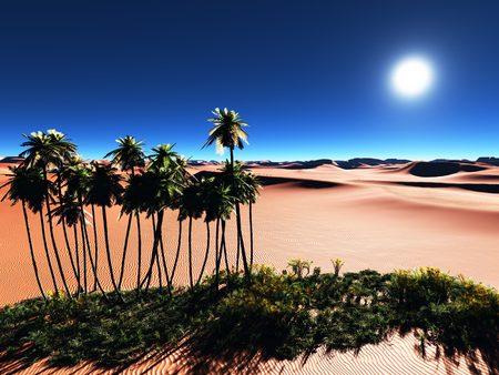 Beautiful natural background -African oasis Reklamní fotografie