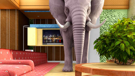 elephant in the living room stock photo 70431168 - The Elephant In The Living Room