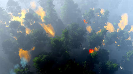 Disaster with fire in the forest 3d rendering Stock Photo