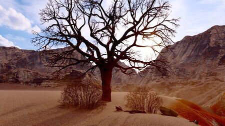 Solitary dead tree in desert 3d illustration Standard-Bild - 125575252
