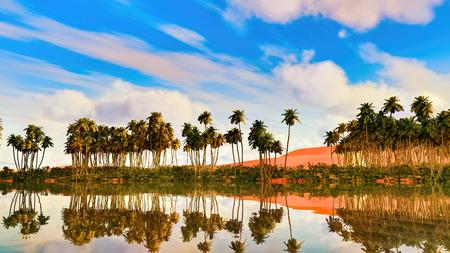 Palmiers près d'oasis en Afrique rendu 3d