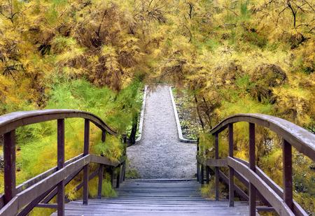 Wooden bridge in the autumn park 版權商用圖片