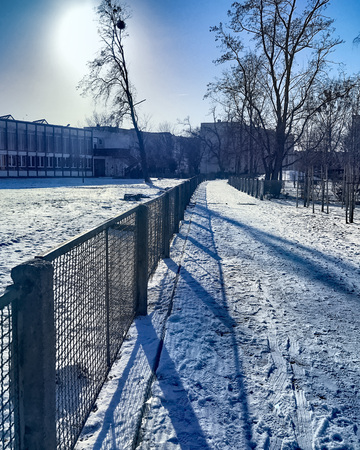 Winter time in the city 版權商用圖片
