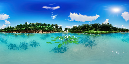 3d illustration spherical 360 degrees, seamless panorama of palm trees near oasis