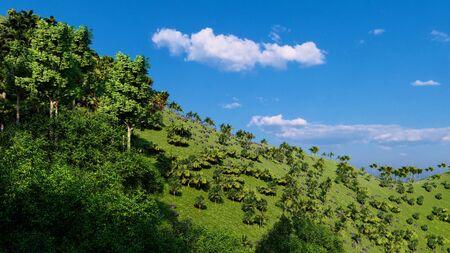 Jungle hills, Ishigaki Island Okinawa Japan 写真素材