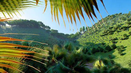 Jungle hills, Ishigaki Island Okinawa Japan