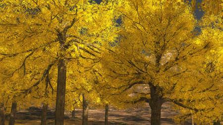 Aspen valley in Colorado during Autumn time Reklamní fotografie