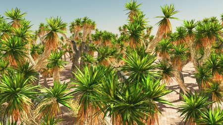 Joshua Tree National Park, USA 3d rendering