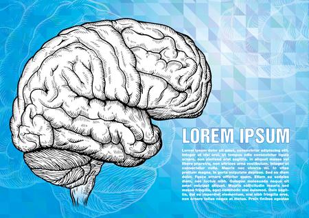 human brain engraving on modern backgound 向量圖像