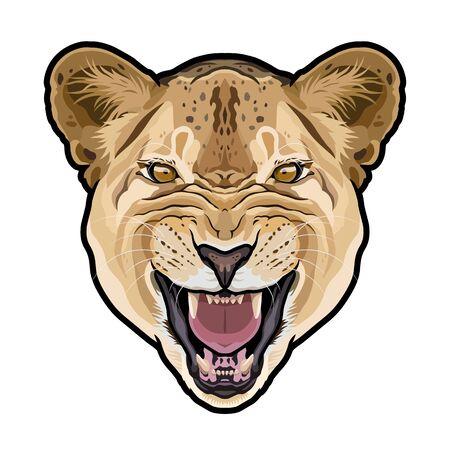 Lioness animal cute face. Vector African wild lion cat head portrait.