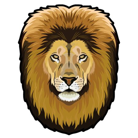 Lion Head Graphic colored symmetrical isolated vector illustration 向量圖像