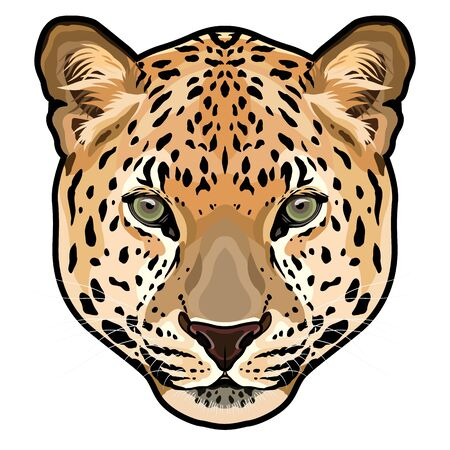 Głowa lamparta, panthera pardus, duży kot, ilustracja wektorowa dzikich zwierząt
