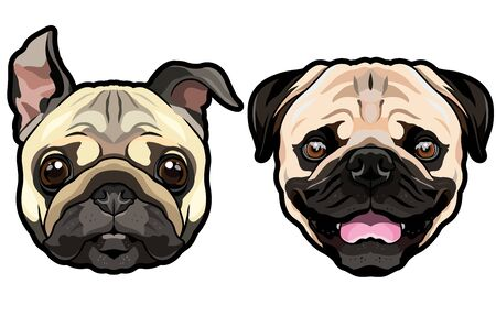 Vector funny happy doggy heads portrait of wrinkly pug puppies isolated