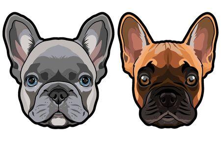 Vector set of french bulldogs heads illustration 向量圖像