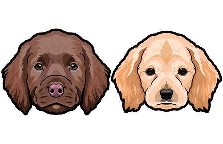 Spaniel breed dog puppy heads colored vector illustration 向量圖像