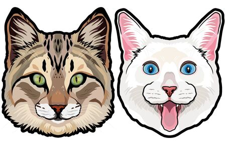 Set of two colored house cat heads vector illustration isolated 向量圖像