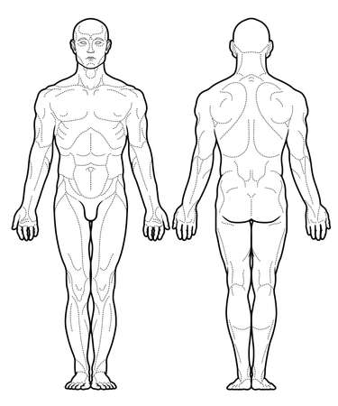 Chinese acupuncture points scheme black and white vector illustration Illustration
