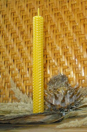 taper: hand rolled natural beeswax candles taper