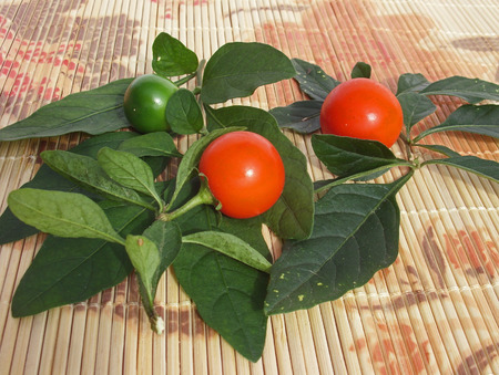 hotter: Orange and green chilies