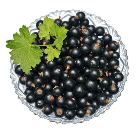 blackcurrant: Blackcurrant with leaves in glass bowl Stock Photo