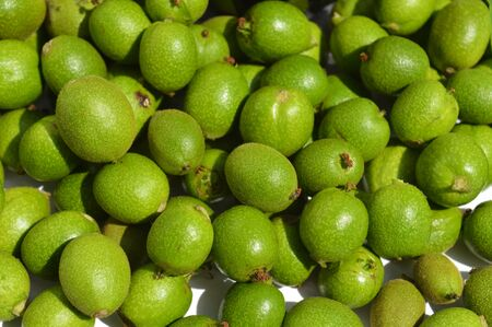 husks: A lot green young walnuts in husks as background