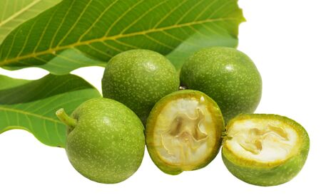 husks: Green young walnuts in husks and leaves