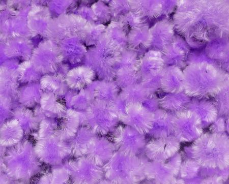 fluff: Art of violet dandelion fluff