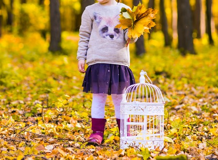 birdcage: Girl with a birdcage  in the autumn forest Stock Photo