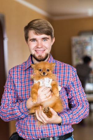 purebred: portrait of a cute purebred  chihuahua and young man