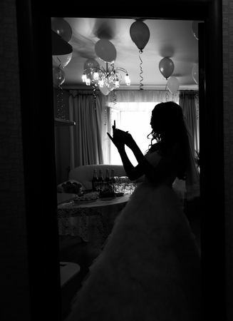 shape silhouette: Bride silhouette in front of high windows