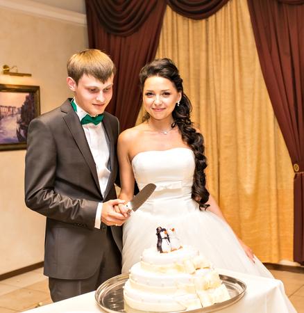 sugarpaste: White wedding cake with figurines of penguins