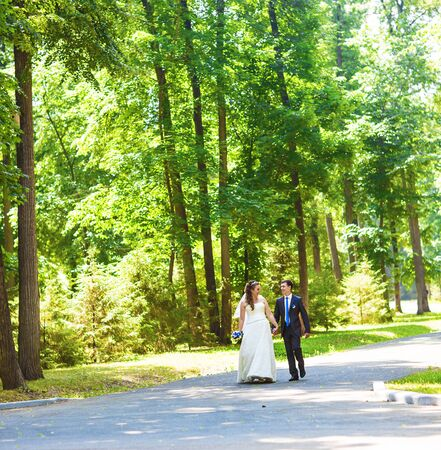 newly married: Newly married couple walk on park paths holding hands. Stock Photo