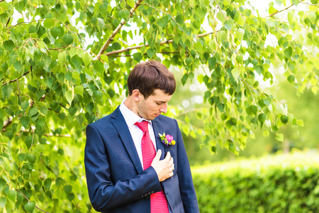 boutonniere: groom in the wedding suit with boutonniere. Stock Photo