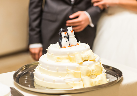 sugar veil: wedding cake with figurines of penguins at the top. Stock Photo