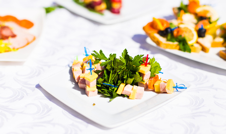 fingerfood: Fingerfood on appetizer table. Canapes on festive table