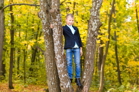 climbed: Smiling boy climbed in a tree in park.