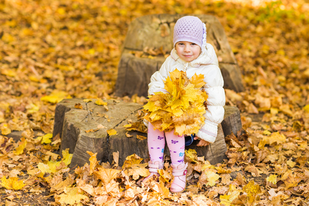 adorable little girl with autumn leaves in the beauty park.
