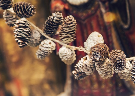 piny: Pine cones and Christmas decor. New year decor.