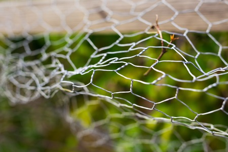 Fence with broken wire