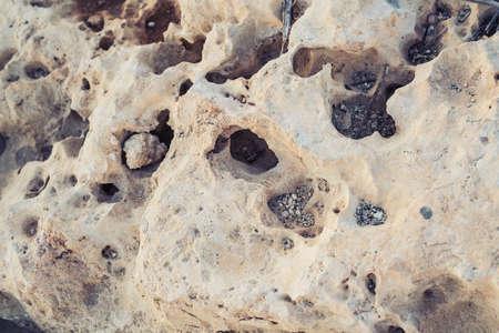 ビーチで白い色の多孔性の石